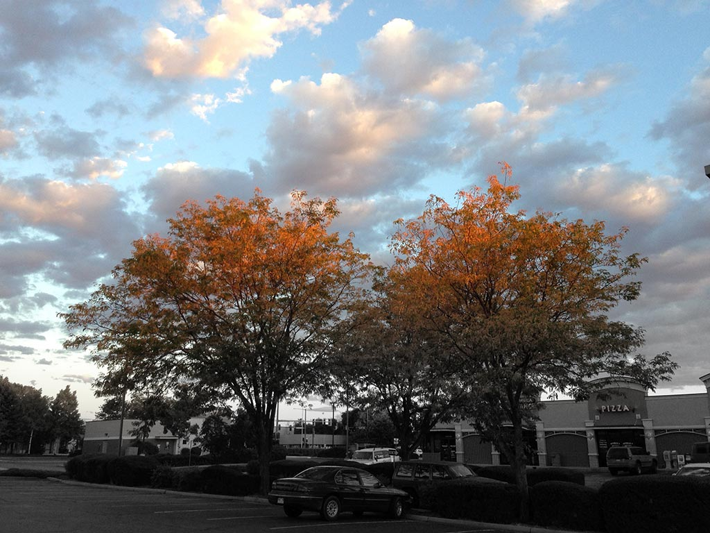 A fall scene with blue skies and colored leave and black and white shopping center below.